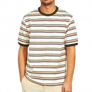 DICKIES T-SHIRT - NEW PALTZ HEATH GREEN